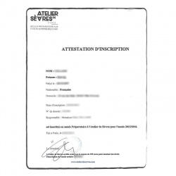 Certificado de matrícula FR francés